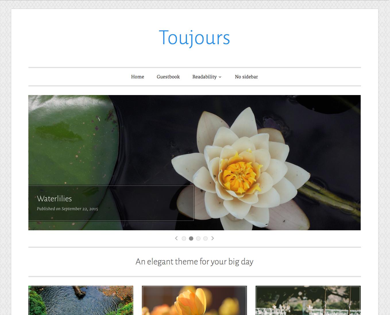 Toujours screenshot
