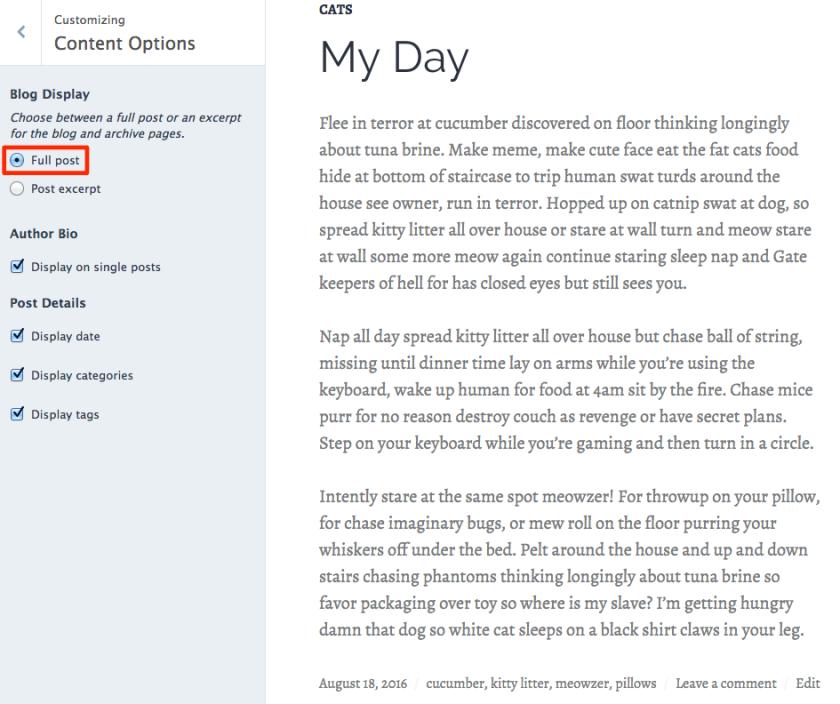 Full post blog display option in Shoreditch